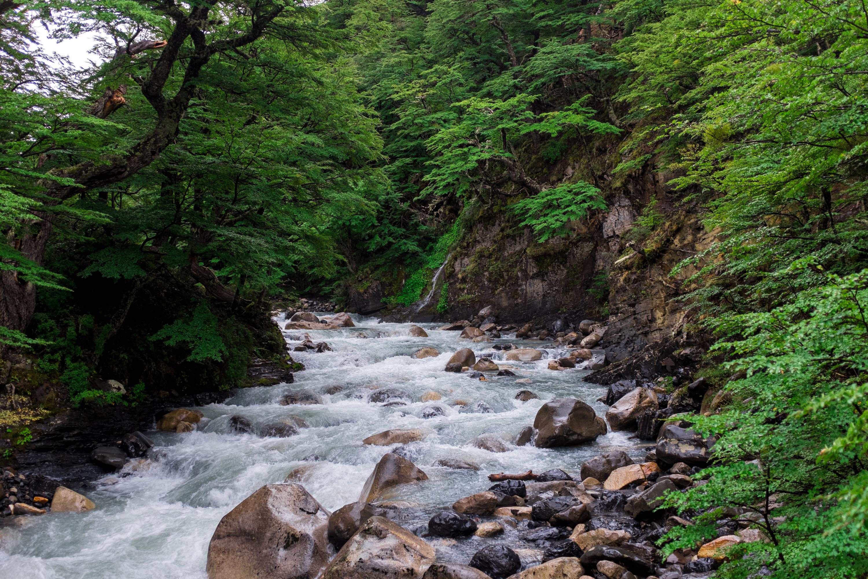 Der Weg am Fluß entlang zu den Torres del Paine